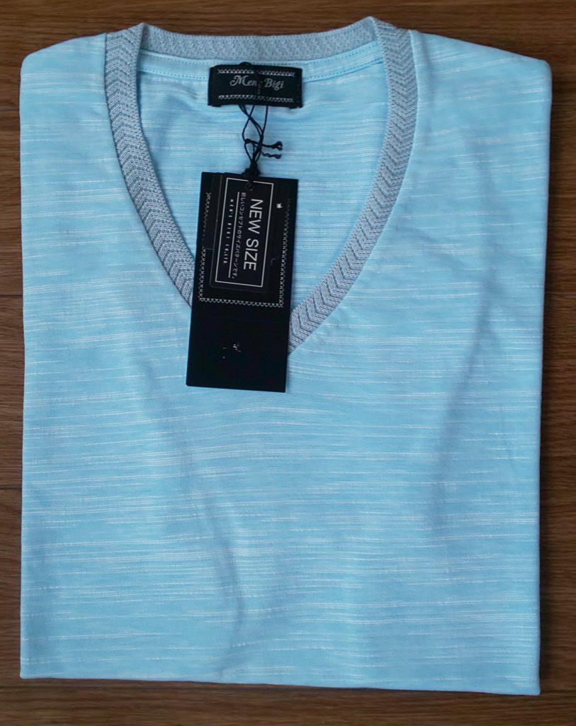MEN'S BIGI VネックTシャツ スラブ天竺/JAPAN MADE(日本製) サックスブルー